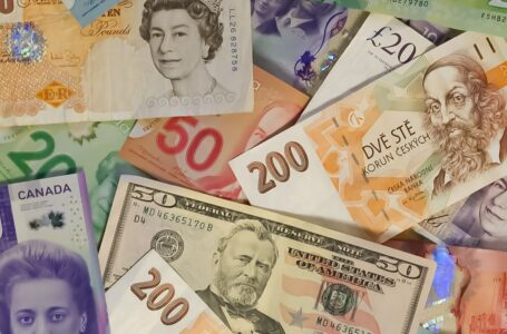 Mixed reactions over Zimbabwean government gazetted new forex regulation