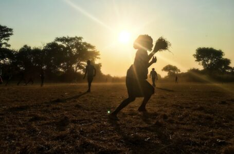 African Development Bank approves US$1,4 million to improve Zambia's food security