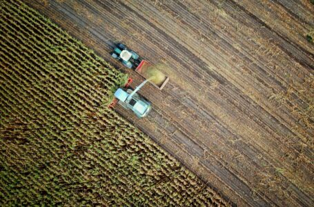African Development Bank, Italian Technical Cooperation Fund inject €990 000 into Mozambican agriculture