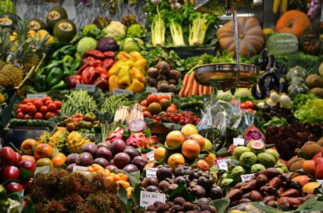 Seychelles' Food and commodities price hikes by 19% and 10.5 % respectively