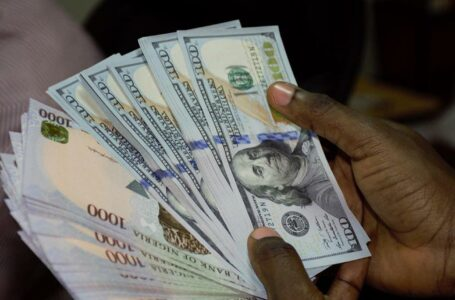 Forex trading is fast gaining traction in Africa's largest economy