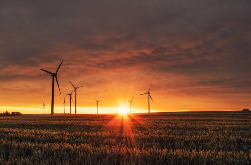 Germany commits €100 million to Sustainable Energy Fund for Africa