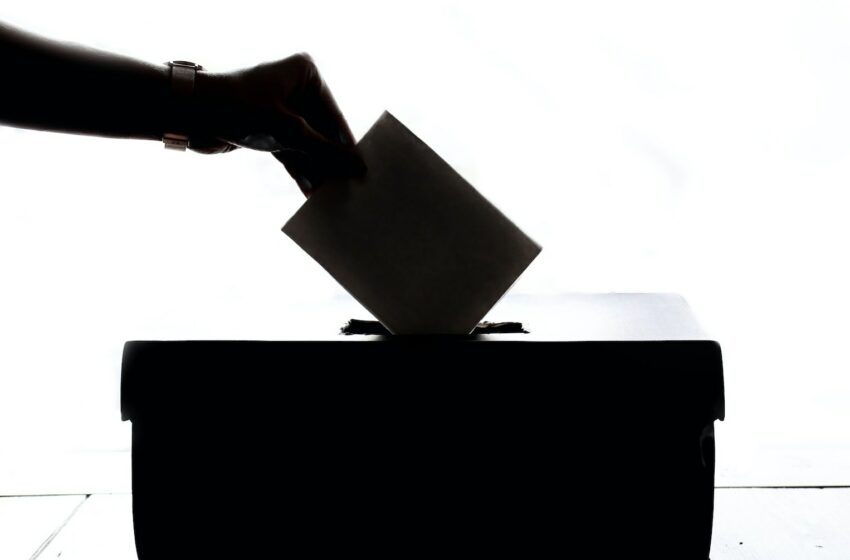 how-will-the-local-government-elections-affect-south-africas-economy-news